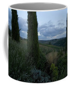 Cypress Trees Growing In The Rolling Coffee Mug by Todd Gipstein