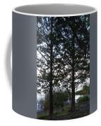 Cypress Trees Coffee Mug