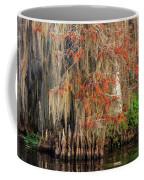 Cypress Winter Colors Coffee Mug
