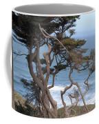 Cypress On The Cliff 15 Coffee Mug