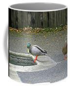 D-a0048 Mallard Ducks In Our Yard Coffee Mug