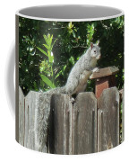 D-a0071-e-dc Gray Squirrel On Our Fence Coffee Mug