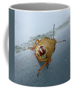 D2b6336-dc Colorful Insect On Sonoma Mountain Coffee Mug
