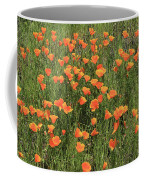 d7b6307 California Poppies Coffee Mug
