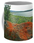Da5869 Lichen Covered Rock Coffee Mug