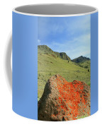Da5872 Lichen Covered Rock Below Abert Rim Coffee Mug
