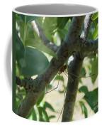 Daddy O Coffee Mug