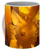 Daffodiil Flowers Evening Glow 9 Contemporary Modern Art Print Giclee Coffee Mug