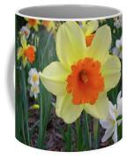 Daffodil 0796 Coffee Mug