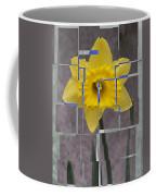Daffodil 1 Coffee Mug