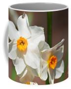 Daffodil Dazzle Coffee Mug