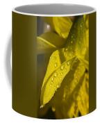 Daffodil Dew Coffee Mug