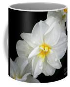 Daffodil Diagonal Coffee Mug