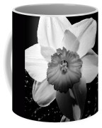 Daffodil In Springtime Coffee Mug