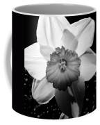 Daffodil In Springtime Coffee Mug