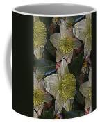 Daffodil Study Coffee Mug
