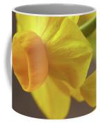 Daffodil Sunrise Coffee Mug