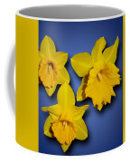 Daffodil Trio Coffee Mug