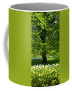 Daffodils And Narcissus Under Tree Coffee Mug
