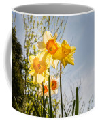 Daffodils Backlit Coffee Mug