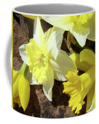 Daffodils Flower Bouquet Rustic Rock Art Daffodil Flowers Artwork Spring Floral Art Coffee Mug