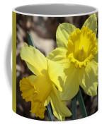 Daffodils In Spring Coffee Mug