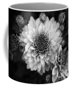 Dahlia Burst B/w Coffee Mug
