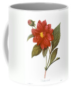 Dahlia (dahlia Pinnata) Coffee Mug by Granger