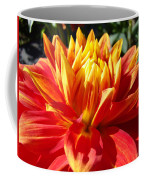 Dahlia Florals Orange Dahlia Flower Art Prints Canvas Coffee Mug