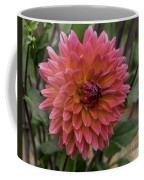 Dahlia In Bloom 19 Coffee Mug