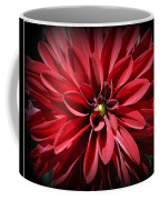 Dahlia Radiant In Red Coffee Mug