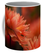 Dahlia Rainshower Coffee Mug