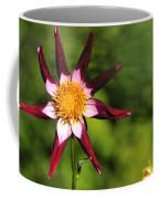 Dahlia Red White And Green Coffee Mug