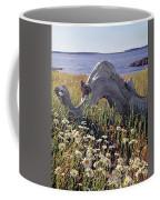 136236-daisies And Driftwood  Coffee Mug