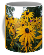Daisies From Niagara Coffee Mug