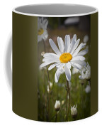 Daisy 1 Coffee Mug