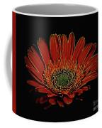 Daisy 105 Coffee Mug