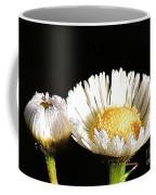 Daisy 6 Coffee Mug