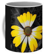 Daisy Crown Coffee Mug