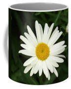 Daisy Days Coffee Mug