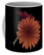 Daisy Tilt Coffee Mug