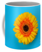 Daisy - Yellow - Orange On Light Blue Coffee Mug