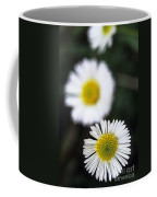 Daisys Coffee Mug