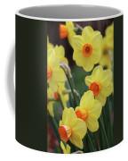 Dallas Daffodils 01 Coffee Mug