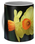 Dallas Daffodils 07 Coffee Mug