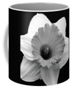 Dallas Daffodils 17 Coffee Mug