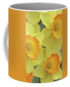 Dallas Daffodils 24 Coffee Mug