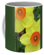 Dallas Daffodils 36 Coffee Mug