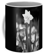 Dallas Daffodils 53 Coffee Mug