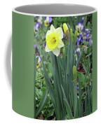 Dallas Daffodils 63 Coffee Mug